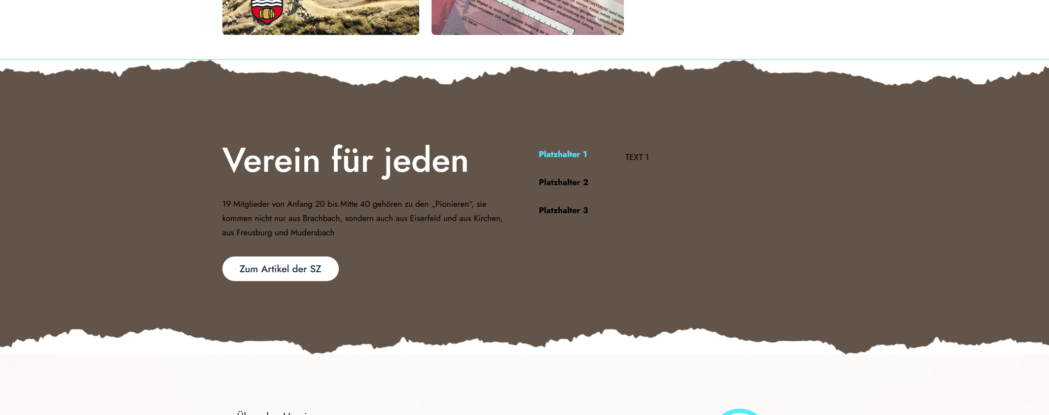 Screenshot_2021-02-20 Elementor Home(1).png